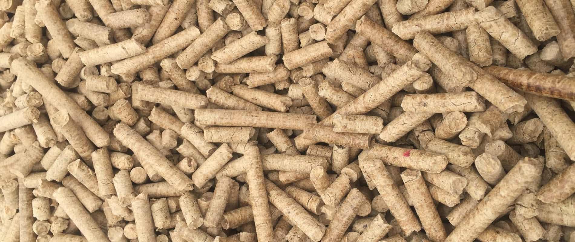 Viên nén gỗ luôn là nhiên liệu đốt lò hơi được ưa chuộng
